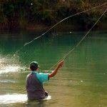 Cañas de Pesca: tipos