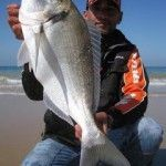 Pescar Doradas Gigantes