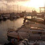 Pesca de Bacoretas en el Puerto de Mazarrón
